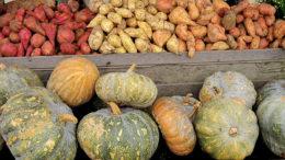 Pumpkins and potatoes. Photo: Ivan Atmanagara